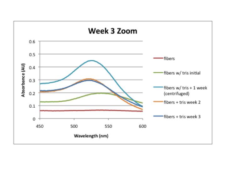 File:Week 3 zoom.png