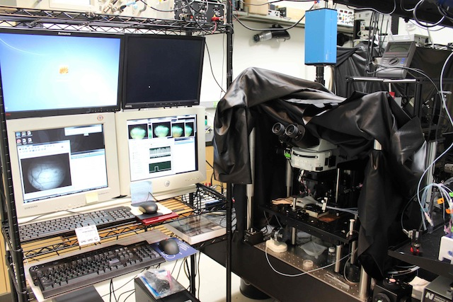 alt=Photo of high-speed two-photon microscope