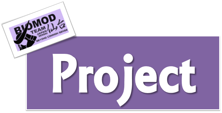 Image:Projecth.png