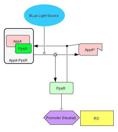 File:AppA-PpsR.jpg