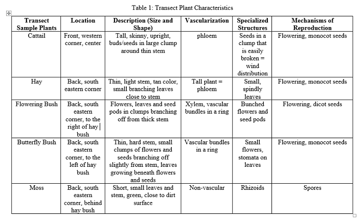 Image:Plant chartt.png