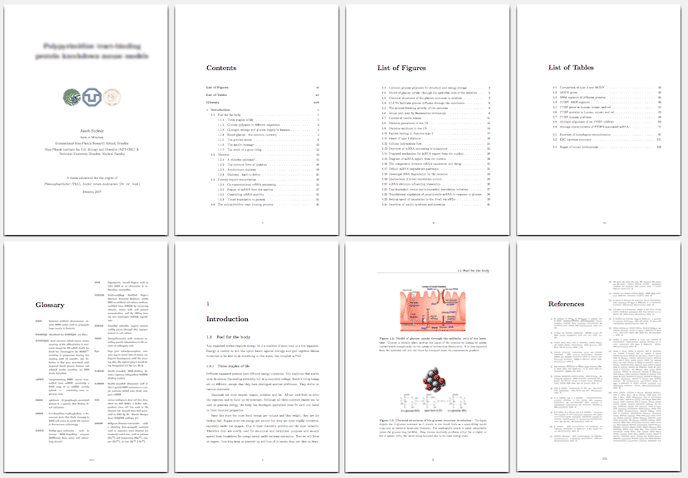 Latex templates dissertation