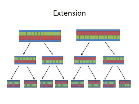 Image:extension dna.jpg