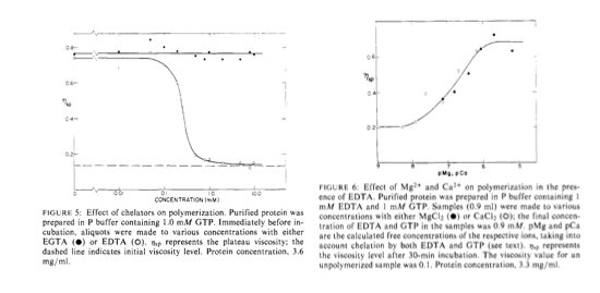 Mg & Ca for MT polymerization.jpg