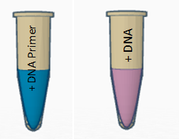 File:Pcr consumables.PNG