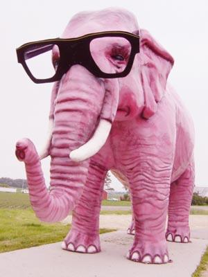 File:Pink elephant1.jpg