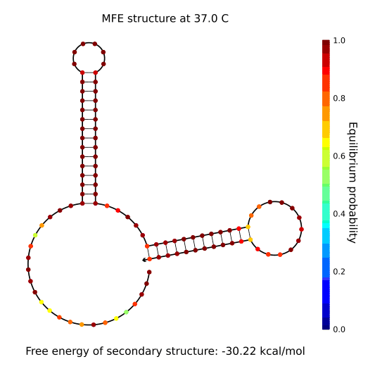 File:TJU-figure2.2.4.png