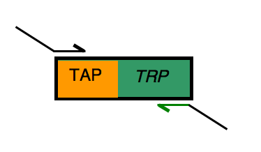 File:TRP-landing rev.png
