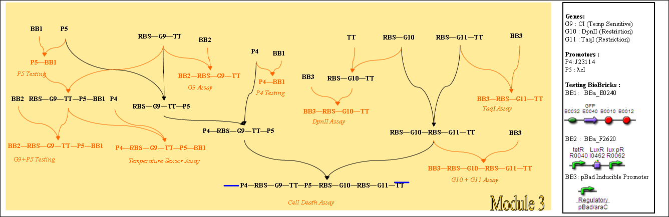 enzyme assays protocols To design, develop and validate robust enzymatic assays for hts  this chapter contains basic concepts in enzyme kinetics, selection of.