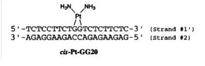Figure 2.  [4].