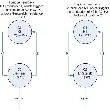 File:Berk basic feedback.PNG