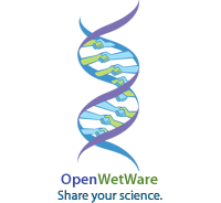 OpenWetWare:Steering committee