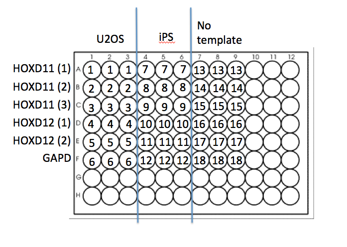 Jan Simper 12 16 15 Plate Layout.png