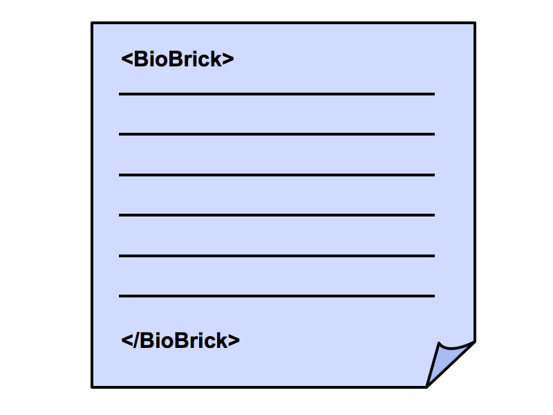 File:VBB BioBrickLanguage.png