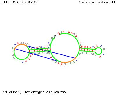 File:JBLucks pT181 RNAI BWF2B pseudo.jpg