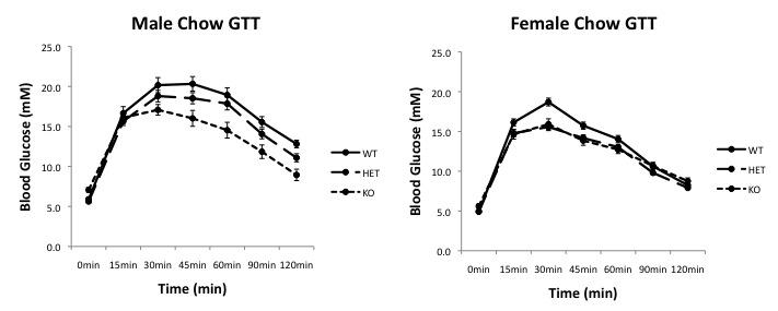 File:Chow GTT curves.jpg