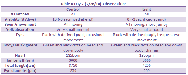 File:Day 7 Observations.png