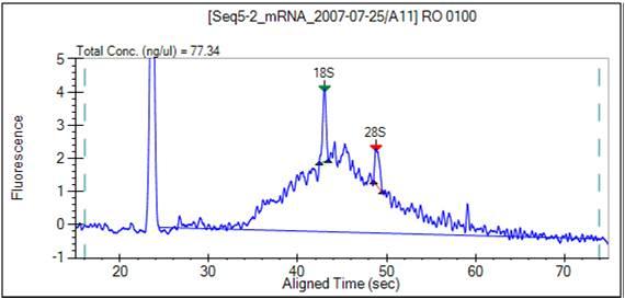 File:BioMicroCenter caliper mRNA.jpg