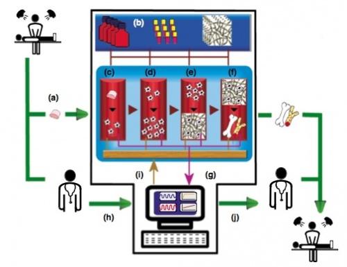 File:Bioreactor Vision.jpg