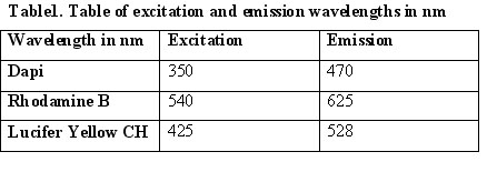 Excitation and Emission wavelengths.jpg