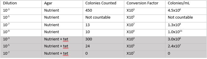 File:Lab3 table bacteria.jpg