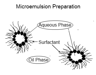 Fig. 1 Reverse micelles in a microemulsion