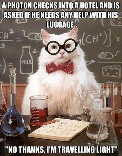 File:ASU BME 2013 group 8 chem cat prof.jpg