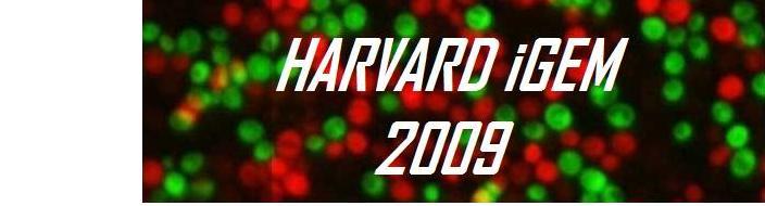 HarvardiGEM3.jpg