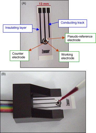 File:Group4fluorometer-web.jpg