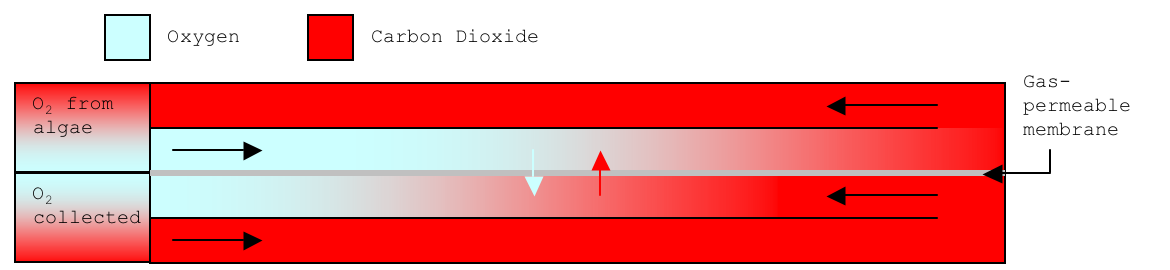 Parallel Flow.png
