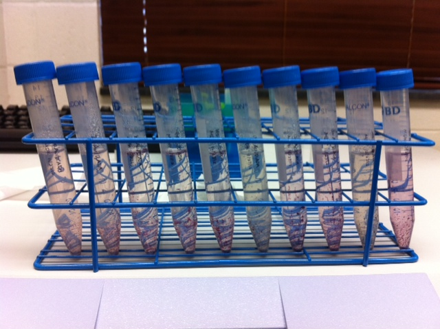 Au ADA samples after dialysis.jpg