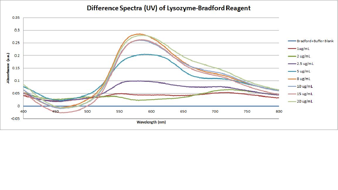 Bradford Assay of Lysozyme.png