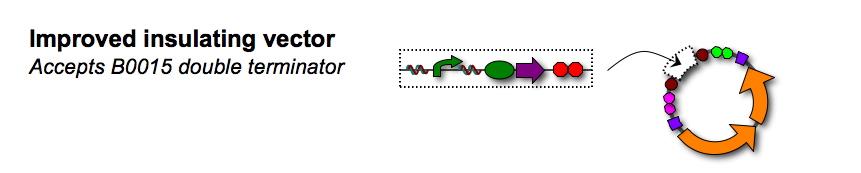Dc vector.jpg