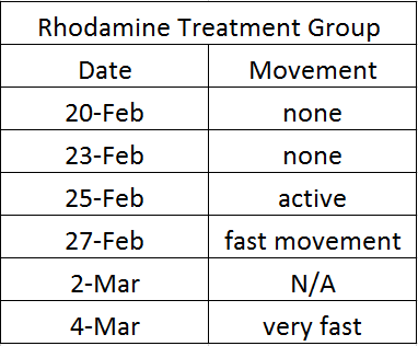 Rhodamine mobility.png