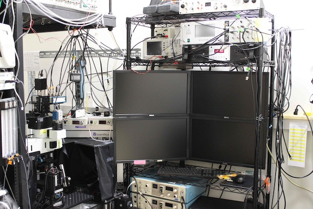 File:2-photon rig-Nagayama lab.jpg