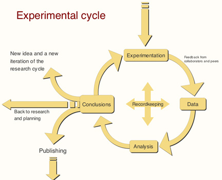 The Experimental Cycle