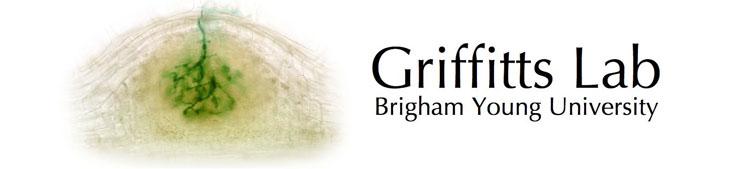 File:Grifbanner2.jpg