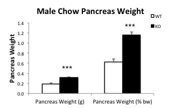 File:Male chow pancreas.jpg