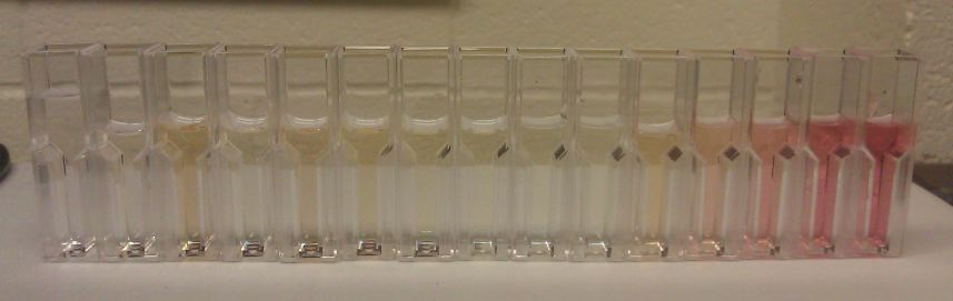 20120912 Absorbance of HRP Assay with AAP.jpg