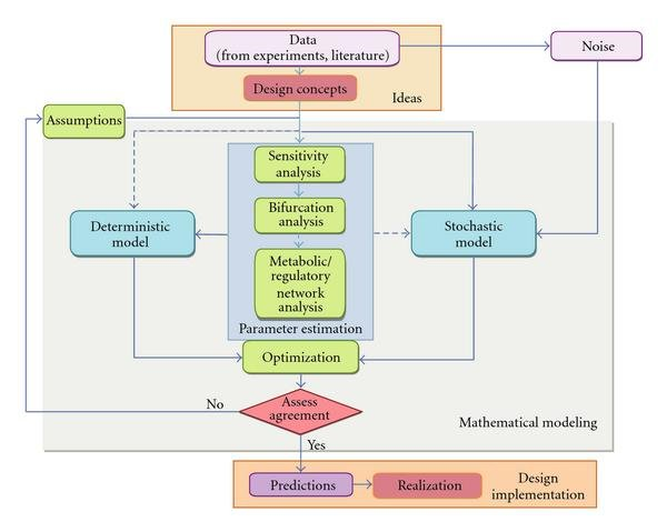 File:Fig 1 Math modeling in synthetic biology.jpg