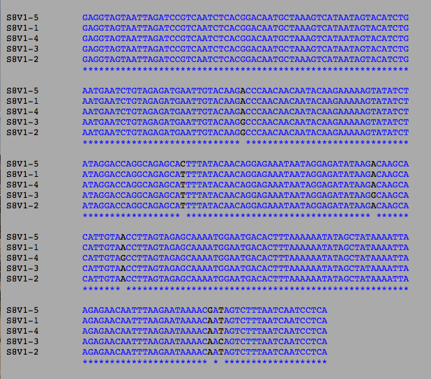 File:Avmsubject8differencesbiol368.png