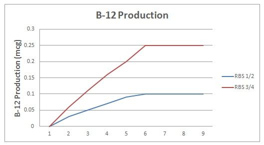 File:Group6 B12 production.jpg