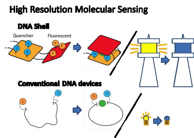 File:Biomod-2012-utokyo-uthongo-High-resolution-molecular-sensing.png