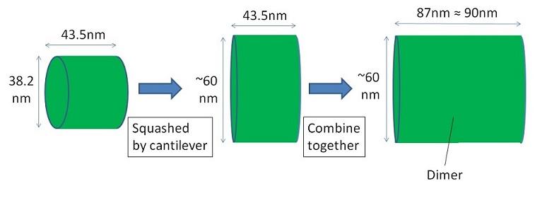 Dimerofcylinder.jpg
