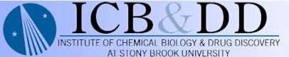 ICB&DD Image.jpg