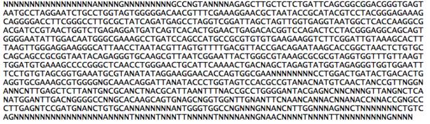 File:Sequencekatrina.jpg