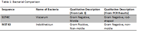 Lab6Table.png