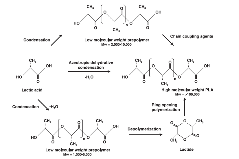 Synthesis pathways of PLA [11].