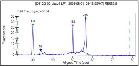 File:BioMicroCenter caliper RNA2.jpg