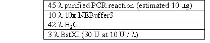 Image:Anchoring segment restriction digest.JPG